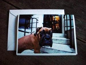 Gift Idea: Turn a Shared Pic into Photo Cards